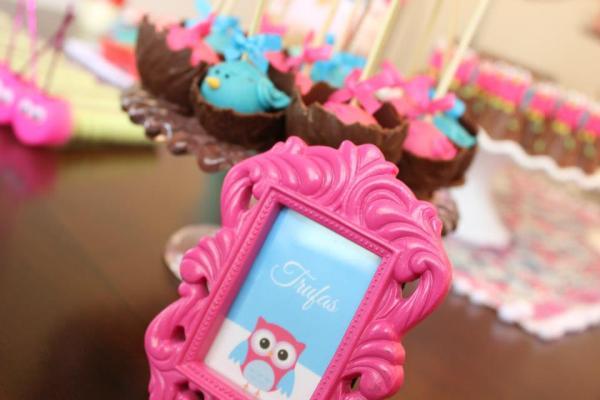 festa-coruja-rosa3
